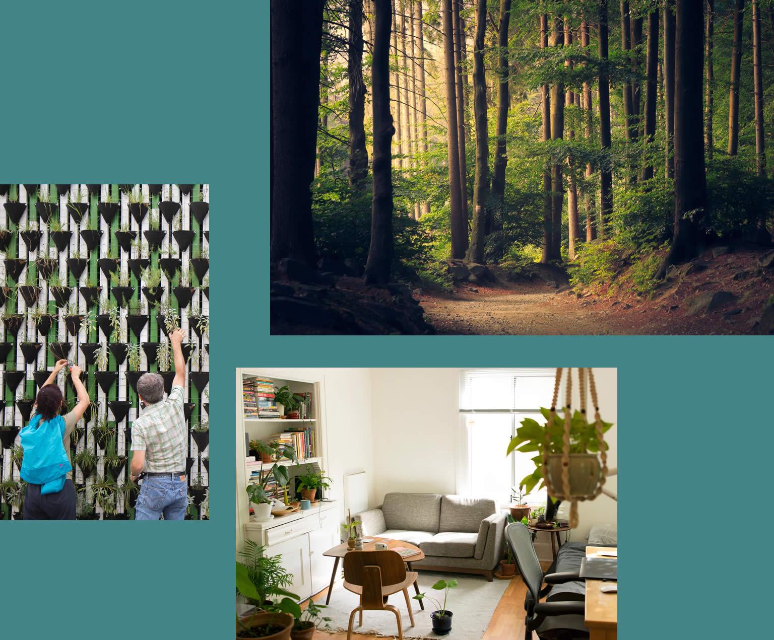 Ökologische Materialien